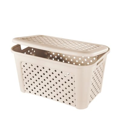 Արկղ Տոնտարելի, ցանցաձև